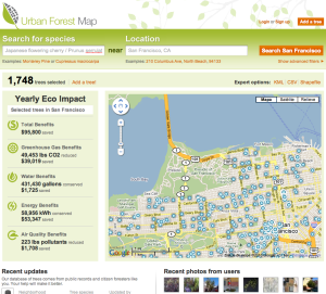 urban forest tree eco impact